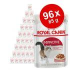 Sparpaket Royal Canin 96 x 85 g