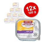Sparpaket: 12 x 100 g Animonda Integra Protect Adult Sensitive Schale