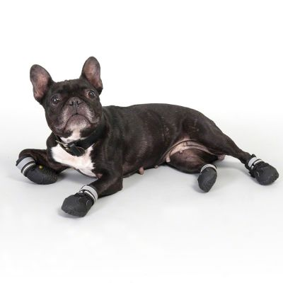 Sports & Protective Dog Boots