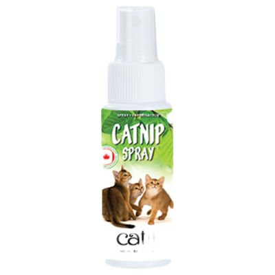 Spray al catnip Catit Senses 2.0
