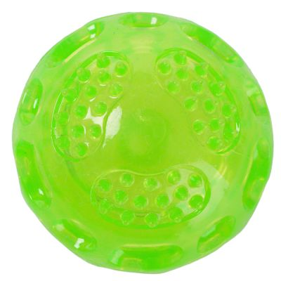 Squeaky Ball Dog Toy