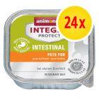 Säästöpakkaus: Animonda Integra Protect Adult Intestinal -rasiat 24 x 100 g