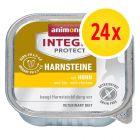 Säästöpakkaus: Animonda Integra Protect Adult Urinary -rasiat 24 x 100 g