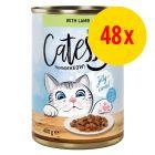 Säästöpakkaus: Catessy kastikkeella tai hyytelöllä 48 x 400 g