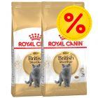 Säästöpakkaus: Royal Canin British Shorthair Adult