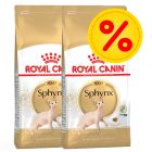 Säästöpakkaus: Royal Canin Sphynx Adult