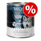 "Säästöpakkaus: Wolf of Wilderness ""The Taste Of"" 24 x 800 g"