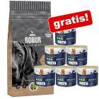 Stor pose Bozita Robur hundefoder + 6 x 625 g vådfoder gratis!