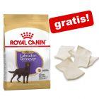 Storsekker Royal Canin Breed hundefôr + Barkoo tyggechips natur gratis!