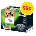 Stort blandat sparpack: Sheba Variationer 96 x 85 g i portionsform