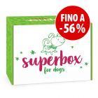 Superbox Winter per cani