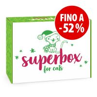 Superbox Winter per gatti