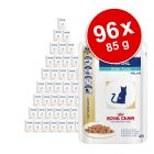 Super-Sparpaket Royal Canin Veterinary Diet Feline 96 x 85 / 100 g