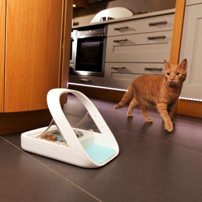 automatisk matskål katt