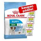 Suurpakkaus Royal Canin Puppy -kuivaruokaa + 4 x 50 g Educ-makupalat kaupan päälle!