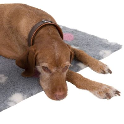 Tapis Vetbed® Isobed zooplus, cœurs & pattes pour chien