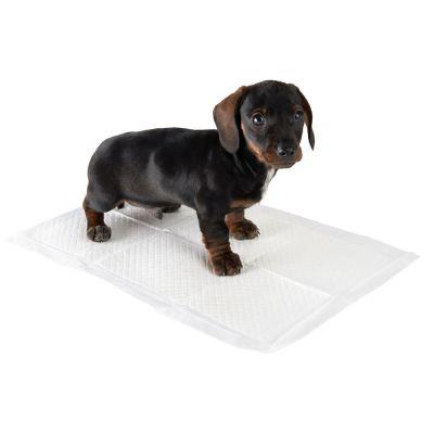 zhppac Tappetini Igienici per Cani Traversine Cani Cuscinetti per Cuccioli Pad di Allenamento Materasso per Cani Coperta per Cani Impermeabile Mat Mat Beige