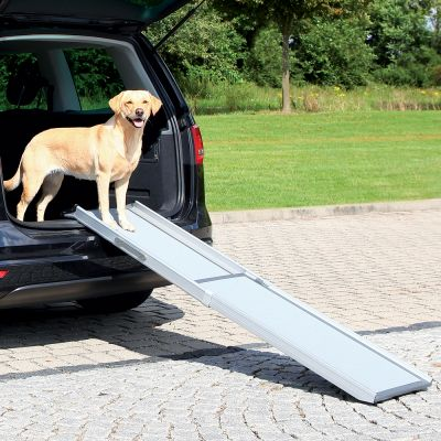 Telescopic Dog Ramp Petwalk