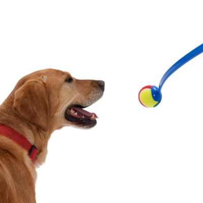 Tennis Ball Launcher hundleksak