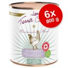 Terra Canis First Aid Delicato 6 x 800 g