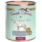 Terra Canis sans céréales, cheval pour chien
