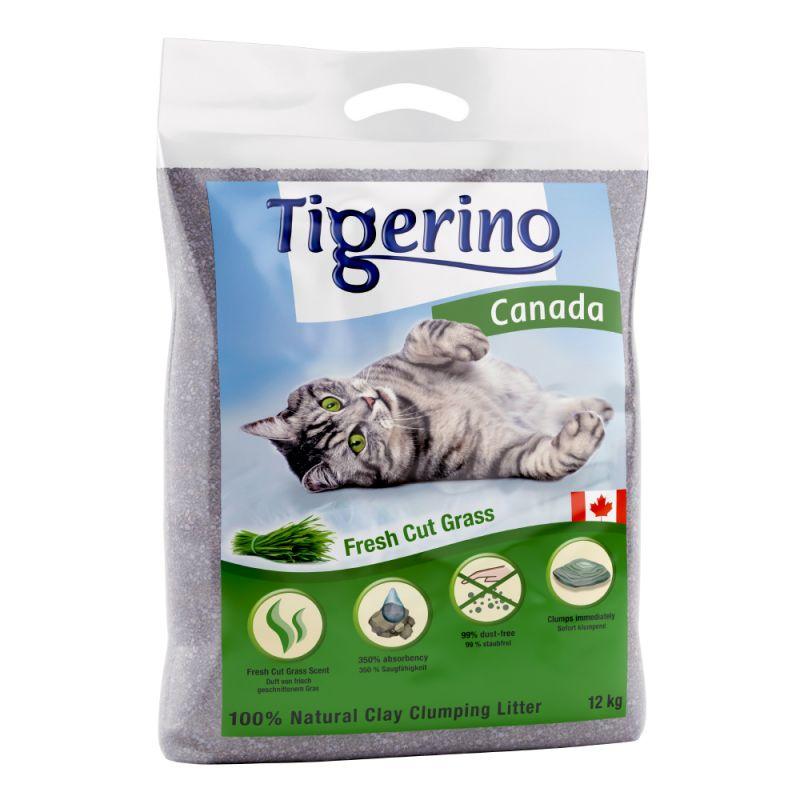 Tigerino Canada areia aglomerante com aroma a erva fresca