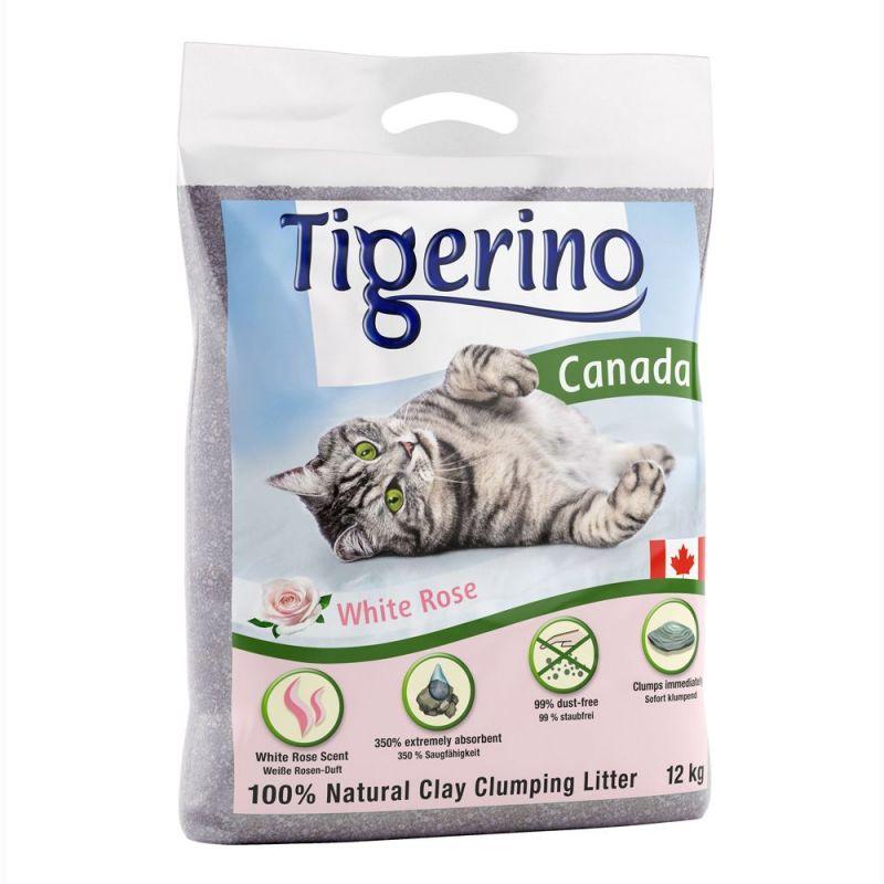 Tigerino Canada areia aglomerante com aroma a rosas brancas