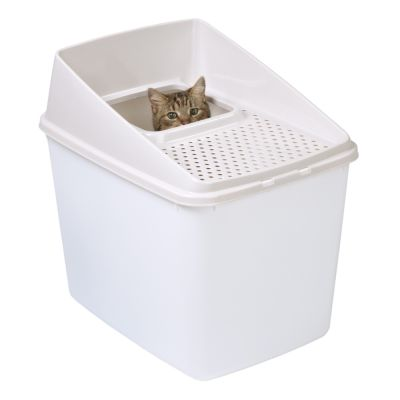 Toilette per gatti Big Box
