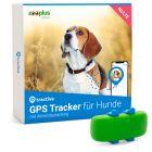 Traceur Tractive GPS pour chien