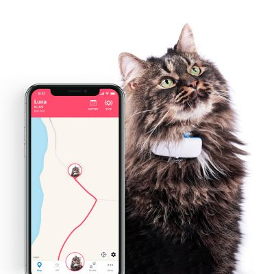 Traceur Tractive IKATI GPS avec collier pour chat