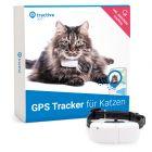 Tractive GPS tracker met activiteitstracking & halsband voor katten