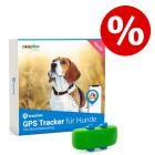 Tractive GPS- und Aktivitätstracker für Hunde zum Sonderpreis!
