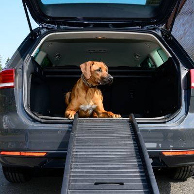 Travel Pro Dog Ramp