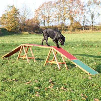 Trixie Dog Activity Agility -puomi
