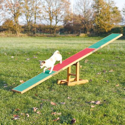 Trixie Agility Wippe