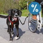 Trixie de Luxe biciklis szett 10% árengedménnyel!