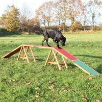 Trixie Dog Activity Agility bro