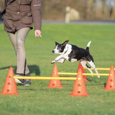 Trixie Dog Activity Hindernissen, 3 Stuks