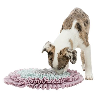 Trixie Junior Sniff and Search Mat