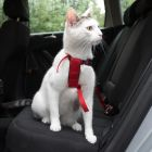 Trixie postroj pro kočky do auta