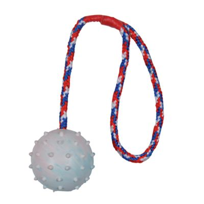 Trixie Rubber Ball with Throwing Handle