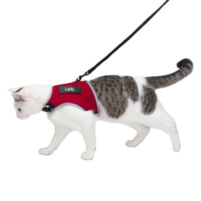 Trixie XCat Harness with Lead and Exclusive Stickers