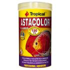 Tropical Astacolor copos para peces