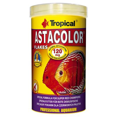 Tropical Astacolor flagefoder