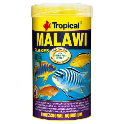 Tropical Malawi flagefoder