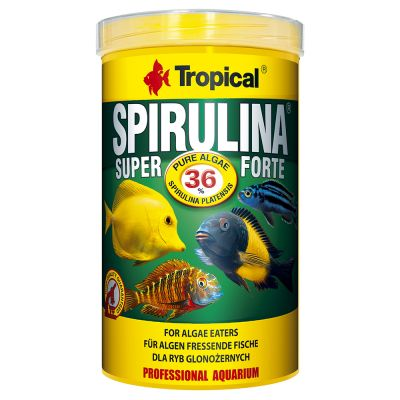 Tropical Super Spirulina Forte 36 % pour poisson