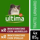Ultima Cat Urinary