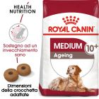 Umido Royal Canin Medium Ageing 10+