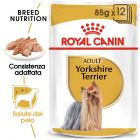 Umido Royal Canin Breed Yorkshire Terrier Adult