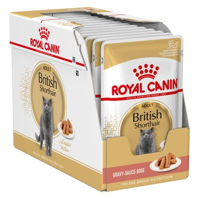 Umido Royal Canin British Shorthair Adult in Salsa